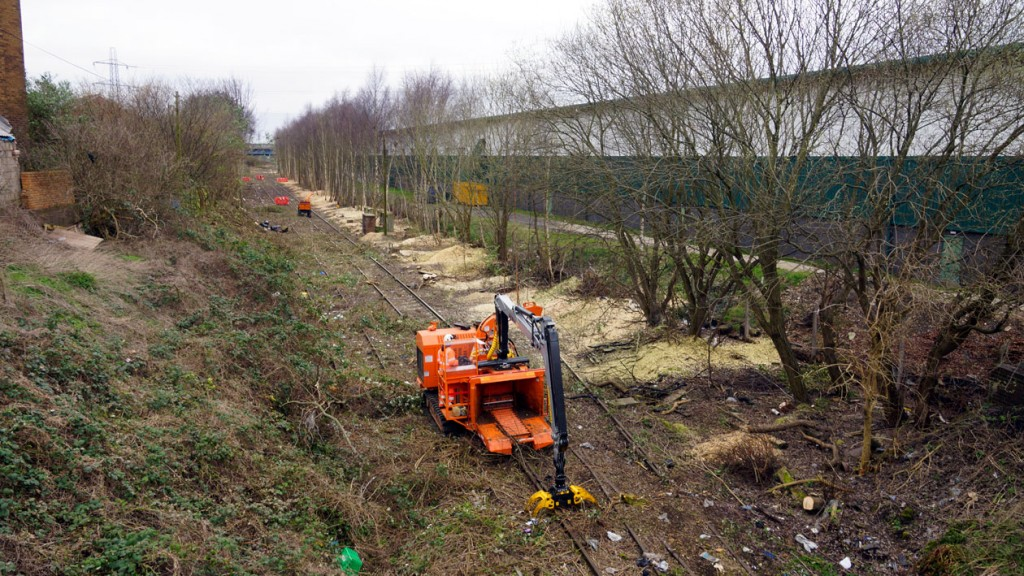 Taken close to the proposed stop at Great Bridge this view shows the amount of vegetation clearance work which is still required to take place with evidence of how much has already taken place.